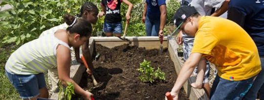 canden community garden
