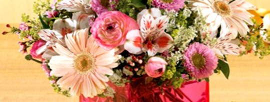 Selamat Hari Ibu untuk Semua