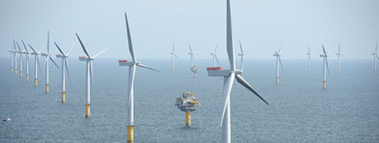 Offshore Wind Turbines Get Approval Of The Seal Community