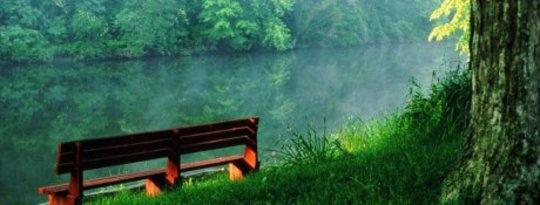 Ga de natuur in en vind vrede