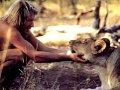 동물의 지혜
