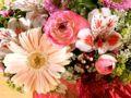 Glad mors dag til alle