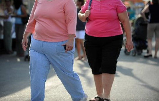 Complexity of Obesity and Holistic Weight Control
