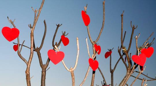 Det nye året legger gaver på hjertet av hjertet