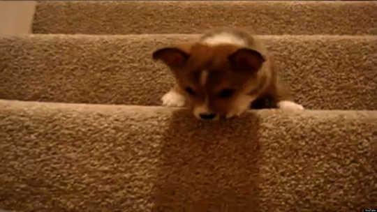 Hur man undviker den dolda mördaren i ditt hem