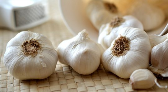 Can Garlic Offer Brain Cells Protection against Aging and Disease?