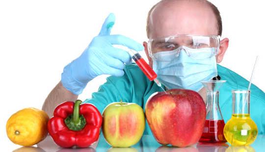Den komplexa typen av genetiskt modifierade organismer kräver en ny konversation