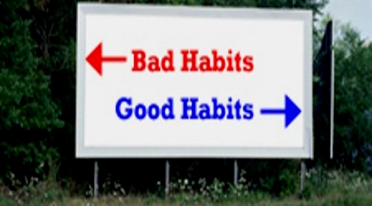 Habits Are Learned: How to Choose Them Wisely