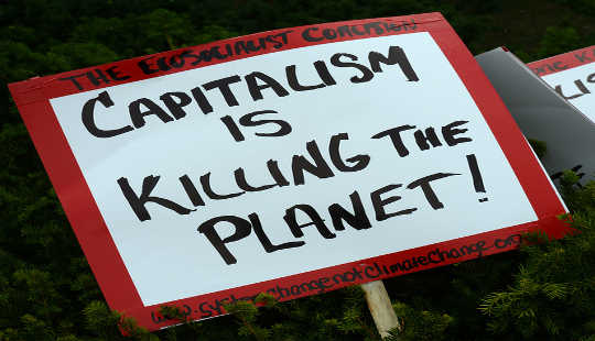 It Is Capitalism That Must Evolve To Solve The Climate Crisis
