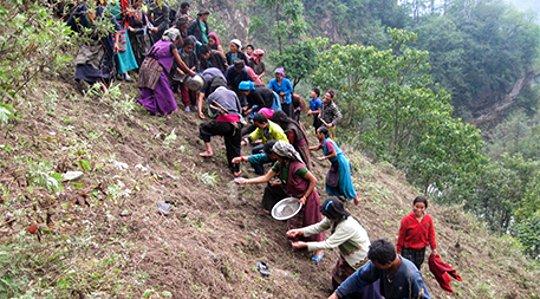 Läkemedel väcker fattigdom och skyddar Nepals bräckliga miljö