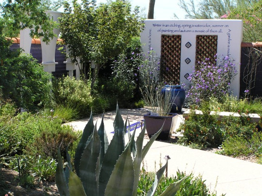 حديقة مغربية