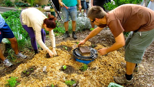 Retour au Jardin: Mulch, Mulch, and More Mulch