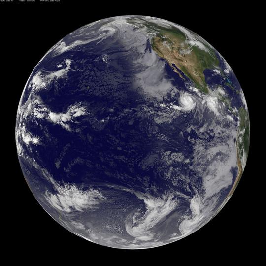 Stillehavet blob2
