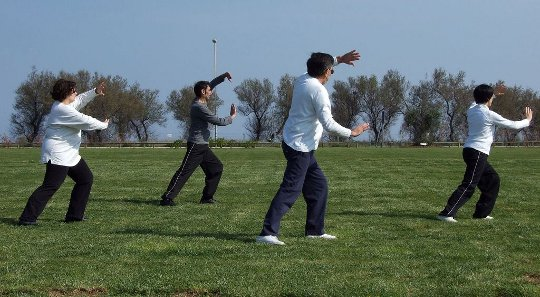 Basic Principles of Qigong: Active Exercise and Inner Health