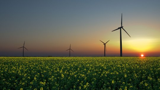 Das Smart Money ist umarmend Renewable Energy