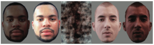 Darker faces elicited more amygdala activity when white subjects were fMRI scannned. The effect of skin tone on race-related amygdala activity: an fMRI investigation, Ronquillo (2007), Author provided