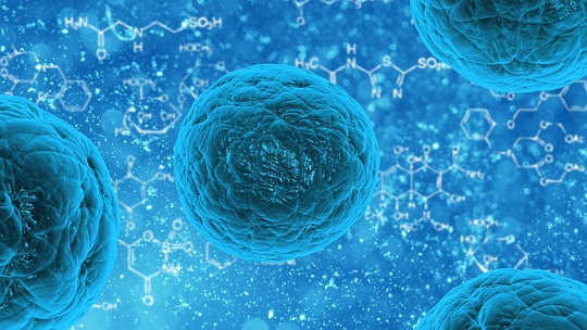 The Hype And The Hope Of Stem Cell Research And Therapy