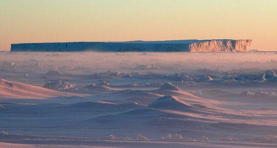 표 빙산은 얇은 계절의 바다 얼음에 달라 붙습니다.