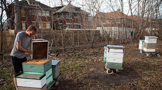 शहरी farming2 5 21