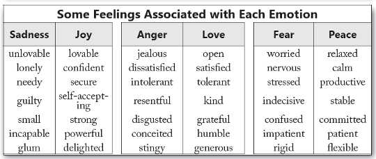 Feelings are the labels we attach to our emotions.