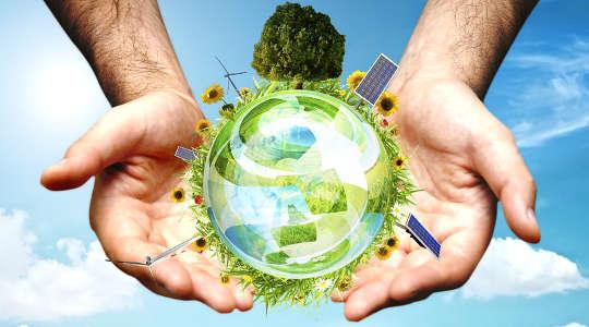 Почему экологическому движению США необходимо новое сообщение