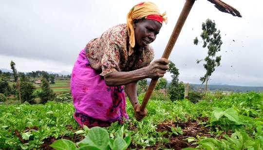 Afrika is de perfecte testgrond voor aanpassing aan het antropoceen-tijdperk