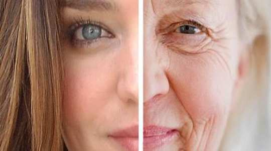 Narrowing In On The Theory Of Aging