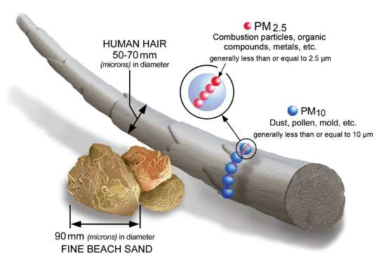 Size comparisons for PM particles. U.S. Environmental Protection Agency