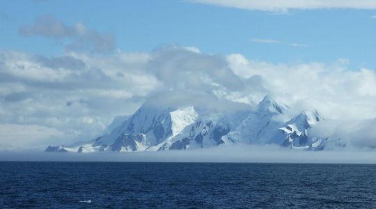 अंटार्कटिका की नाजुक पारिस्थितिकी तंत्र आक्रामक प्रजातियों से खतरे में हो सकता है। सेरीडवेन फ्रेजर, लेखक प्रदान किए गए