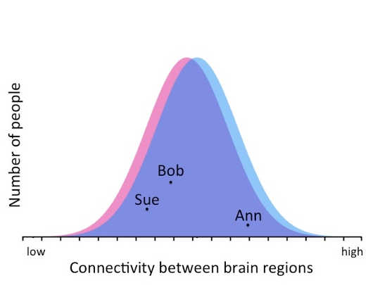 sex differences halari et al This observation, coupled with widely documented sex differences in brain   beacher fd, minati l, baron-cohen s, lombardo mv, lai mc, et al  halari r,  sharma t, hines m, andrew c, simmons a, kumari v (2006).