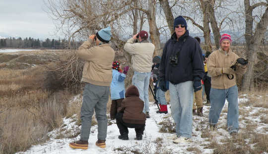 Since 1900 the Audubon Society has sponsored its annual Christmas Bird Count, which relies on amateur volunteers nationwide. USFWS Mountain-Prairie, CC BY