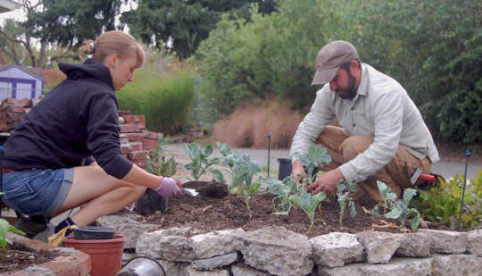 Alleycat Acres Puts New Twist on Community Gardens