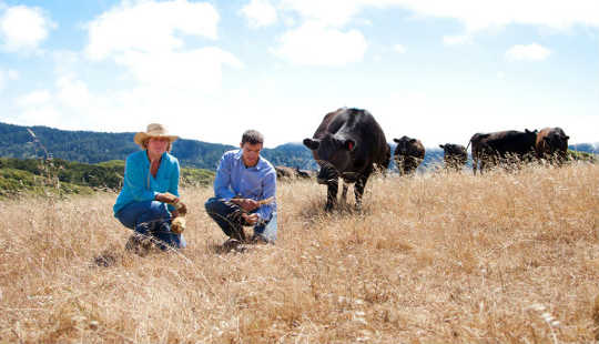 How California Ranchers Use Dirt to Tackle Climate Change