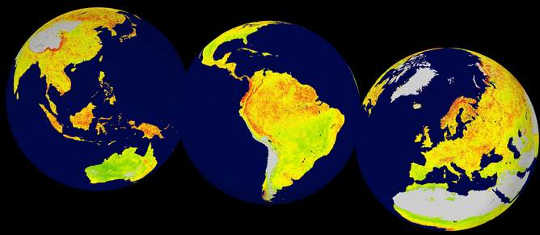 Maps created using satellite data to show which ecosystems are most sensitive to climate (orange) and least sensitive (green). Both could be worrying as the world warms. Seddon et al.