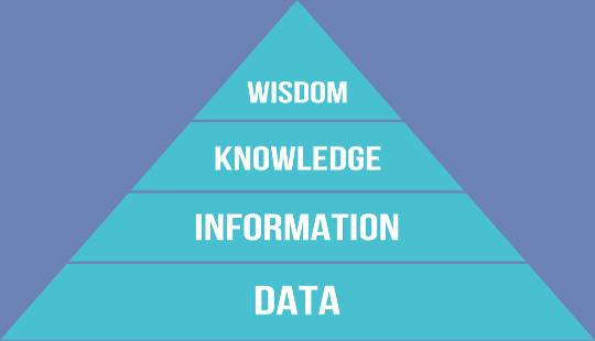 Kişi Gerçek Bilgeliği Nasıl Elde Eder?