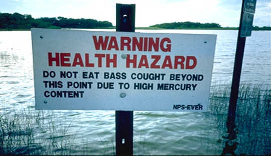 Mercury Contamination Is Widespread Across Western North America