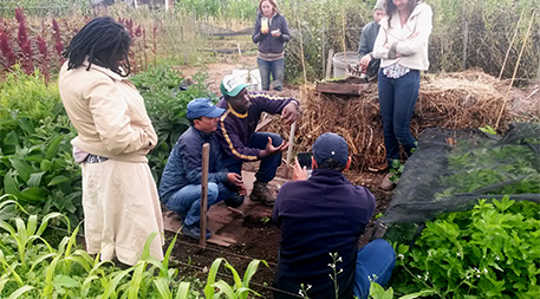 Sammy Kang'ete, an intern from Kenya, teaches visitors at the Golden Rule mini-farm. Photo by Rachel Britten