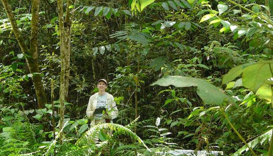 Dr. Letcher in een 15-jarige secundair bos in Costa Rica. Susan G. Letcher