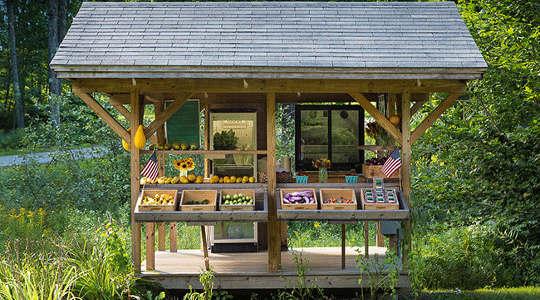 Qué necesitan las pequeñas granjas para competir con la comida corporativa