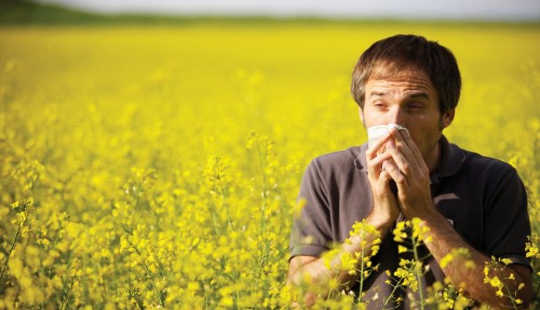 What's The Link Between Hay Fever And Asthma, And How Are They Treated?