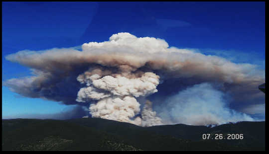 incendios forestales supervivientes 7 13