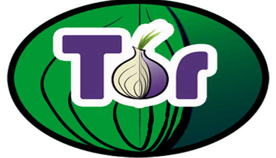 Securing Web Browsing: Protecting The Tor Network