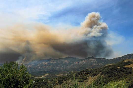 Tinjauan data kebakaran sejak 1980 menunjukkan bahwa kebakaran di hutan dan bentuk vegetasi lainnya telah meningkat secara dramatis. Robert Sander / flickr, CC BY-NC