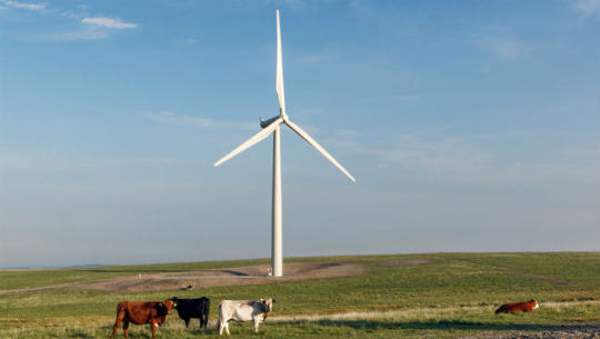 How Iowa Became the Nation's Leader in Wind Energy