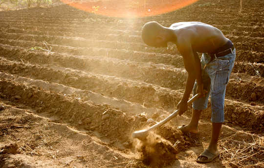 Managing Water Is Key To Adapting African Agriculture To Climate Change