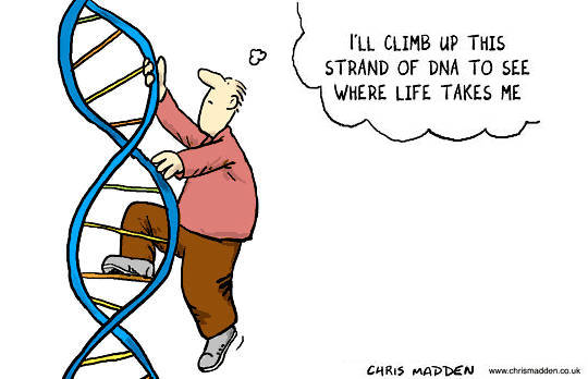 How To Heal Our DNA with the Assistance of Our Innate Self