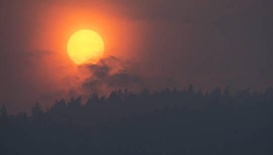 orman yangını dumanı