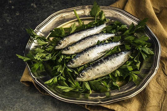 For Better Gut Bacteria, Eat More Oily Fish