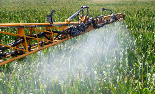 New Research Suggests Common Herbicides Are Linked To Antibiotic Resistance