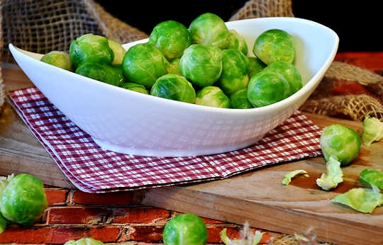 Ang Scientific Defense Of The Brussels Sprout